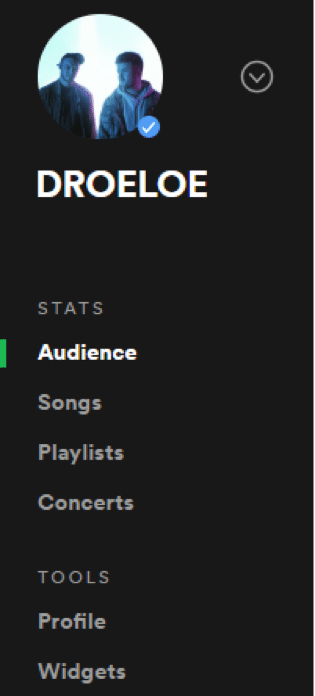 Spotify Marketing Strategy - Spotify for Artist Sidebar View
